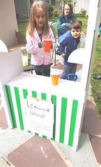 Let it Go Princeton 2016 (Princeton Public Library, NJ) Tags: princeton sustainability letitgo princetonpubliclibrary sustainableprinceton communitywideyardsale