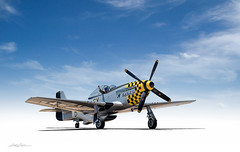 Trouble 2X (DL_) Tags: vintage aircraft aviation wwii mustang p51