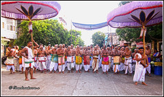 6119 - Sri Parthasarathy Temple  Bromotsavam April 2016 (chandrasekaran a) Tags: travel india heritage car festival temple vishnu culture traditions lord procession krishna chennai tamil nadu tamils parthasarathy triplicane brahmotsavam alwars vaishnavites schollars tokina1116mm canoneos760d