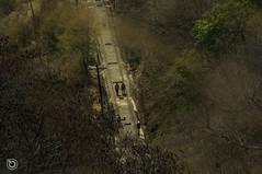 Vas (Braulio Gmez) Tags: guadalajara paisaje barranca gully caon huentitan barrancadehuentitan floresyplantas faunayflora barrancaoblatos barrancaguadalajara