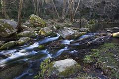 Gorg Santa Margarida (magomu) Tags: water agua catalonia girona filter lee nd catalunya catalua gerona garrotxa