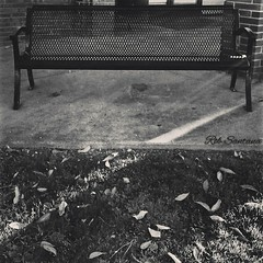 Rob Santana Photography  #LosAngeles #California #westcoast #socal #myphoto #myedit #spliffartist #splifftography #bench #bnw (robsantana) Tags: california bench losangeles socal myphoto westcoast bnw myedit splifftography spliffartist