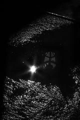 MYSTERIOUS PUDDLE (elisanobile) Tags: city sun water canon torino puddle h2o bn canon350d b7w sole acqua turin lampione citt pozzanghera