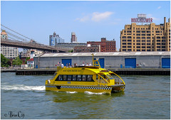 New York Water Taxi (brianac37) Tags: newyorkcity newyork brooklyn brooklynbridge eastriver watertaxi watchtower brooklynpiers watchtowerbuildins jeehovawitnesses