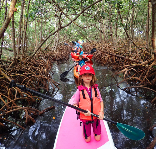 1_1_16   b paddleboard tour Lido Key Sarasota FL 03