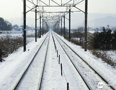 Snow - 2008 (Carlos Shibata) Tags: travel snow japan train neve viagem japão aichi trêm