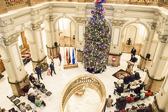 151202-Z-UA373-120 (CONG1860) Tags: usa unitedstates denver co goldstar cong coloradonationalguard treeofhonor cong1860 stateofco