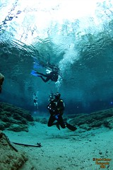 IMG_1958 (2) (SantaFeSandy) Tags: life camera new beautiful loving canon fun carr high day air dive lord buddy hires most freediving springs ballroom be thankful powell lamar zachary cave years swimmers wes cavern soon mauricio maurizio ginnie 2016 freedivers january1 restrepo ikelite gopro breathhold sandykoster sandrakosterphotography sandrakosterphotographycom