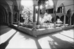 Cloitre153 (duncan herondancer) Tags: film abbaye kodakhighspeedinfrared