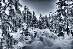 Moonage Daydream (beelzebub2011) Tags: longexposure snow canada britishcolumbia snowshoeing northvancouver seymourmountain 10stopnd