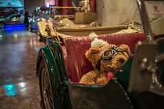 MEGA WEB() (Kelvin Wun) Tags: auto car japan nikon automobile teddy toyota  odaiba outlet venusfort yurikamome   d610 tky