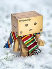 Winter Danbo (Graeme Pow) Tags: winter snow cold japan scarf toy japanese scotland amazon edinburgh box cardboard figure packaging boxes danbo 365days danbooru revoltech danboard cardbo danboru