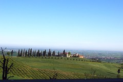 Italy (Dozza) unique view of countryside of Italy