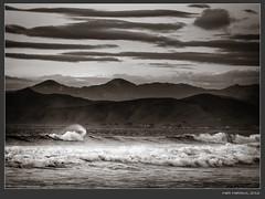 IMGP7000-Edit-Edit (Schleiermacher) Tags: california monochrome landscapes blackwhite centralcoast pentaxart pentaxk5