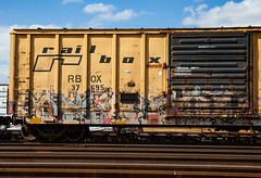 (o texano) Tags: bench graffiti texas houston trains freights debt a2m benching gouls adikts