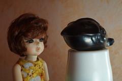 02_wonder (sansun_sansun) Tags: corinne adad yosd momocolor momo26