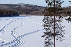 Trace de motoneige (sosivov) Tags: blue trees winter white mountain lake snow forest landscape sweden