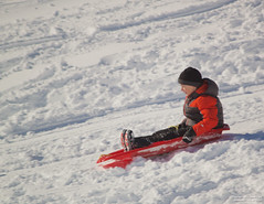 First Run (leelanau2010) Tags: blue winter red usa white snow kids mi fun parents lucy crazy sister christopher bumpy sledding northwoods