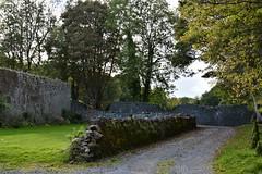 100715-583F (kzzzkc) Tags: ireland tree castle grass stone wall nikon grounds gravel d7100 ahascragh clonbrock