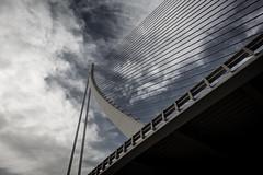 Valencia (Sv_eni) Tags: bridge valencia calatrava architektur brcke santiagocalatrava turia ciudaddelasartesydelasciencias flixcandela schrgseilbrcke canoneos100d pontdelassutdelor