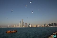 Abu Dhabi Februar 2016  121 (Fruehlingsstern) Tags: abudhabi marinamall ferrariworld canoneos750 scheichzayidmoschee