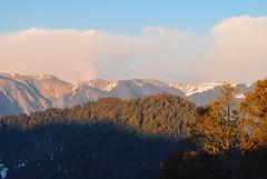 Sunset Light on Dhauladhar (_Amritash_) Tags: travel sunset india landscape landscapes meadows himachal himalayas snowcappedmountains travelindia sunsetlights dhauladhar dhauladharrange himalayanlandscape himalayanranges himalayanmeadows travelinindianhimalayas
