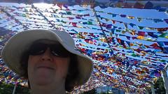 366:066 (Jacqi B (catching up)) Tags: newzealand flags nz wellington 365 aotearoa jacqi frankkittspark fkp 366 365days wellingtonwaterfront 366days nzfestival 365days2016 366days2016 flymeupwhereyouare