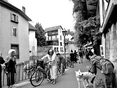 Annecy (escena callejera) (pbernalmac) Tags: street people dog annecy canal calle gente scene medieval perro casas channel escena