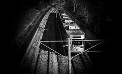 Tram lines (vuralyavas) Tags: city railroad travel light urban blackandwhite bw white black monochrome train turkey underground subway blackwhite metro tram railway istanbul bnw urbanlife urbanperspective