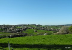 DSCN0368 (studio matahari lutong) Tags: blue sky bavaria spring ride tara maureen fruehling spessart mainfranken