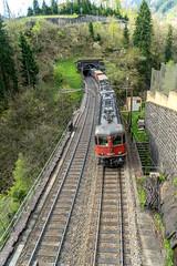 Full dynamic braking (jaeschol) Tags: switzerland railway sbb locomotive ch uri gotthard wassen re44 electriclocomotive untere re1010 meienreussbrücke bergstrecke