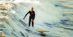 OCEAN BEACH 104 (Detective Steve) Tags: ocean california surf sandiego surfer wave surfing pacificocean surfboard oceanbeach wetsuit surfergirl