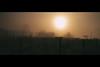 thatField1 (r_if) Tags: sun field warm olympusep1 lumix20mm17