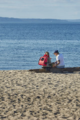 Interesting cat carrier (photodesignch) Tags: ocean seattle sea beach water waterfront pentax takumar outdoor super adapter alki alkibeach limited smc pentax67 pentaxfa 4319 7718 10524 sonya7 pentaxfasmc7718limited pentaxfasmc4319limited p645k
