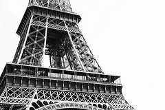 Defaite #defaite #paris #damedefer #acier #toureiffel... (foenixisonfire) Tags: blackandwhite paris tower noiretblanc magic eiffeltower theend eiffel part toureiffel end middle psg acier partof magique morceau damedefer notmagic defaite uploaded:by=flickstagram instagram:venue=2593354 instagram:venuename=toureiffel instagram:photo=12270653858239250873020213483