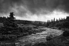 Noirway (PixPep) Tags: trees norway clouds creek river norge lightandshadows noir rondane lightanddarkness noirway