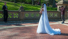 Wedding Shooting in Central Park New York (wuestenigel) Tags: wedding usa newyork us centralpark hochzeit hochzeitsfotografie