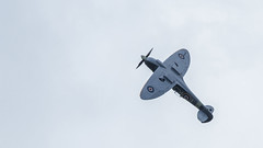 _MG_9773 (jjays7155) Tags: spitfire romsey broadlands eos7d ef400f56