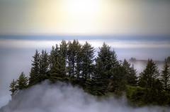Where Heaven And Earth Meet (karenhunnicutt) Tags: fog oregon coast oceanview pnw pacficnorthwest amazinglandscape karenmeyere karenhunnicutt karenmeyer karenhunnicuttphotographycom scenichighway101 minneapolisfineartphotographer