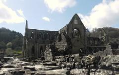 Tintern Abbey (blueachilles) Tags: abbey ruin monmouth tintern ditookthis