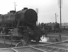 WD 2-8-0 90020 and Stanier 5MT, Dundee Tay Bridge shed 62B (rac819) Tags: steam railways britishrailways steamlocomotives uksteam brsteam