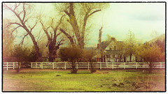 Old Carson (Dave Heise) Tags: ranch old city house carson photo nevada faded