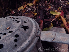 A Cauldron in The Forest (Laindessiel Photography) Tags: autumn colour forest leaf witch magic fujifilm cauldron witchcraft magia fujifilmfinepix calderone