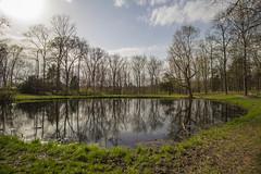 Post Oak Pond (Larry Senalik) Tags: park city forest canon giant illinois spring pond oak post state national dslr shawnee t3i 2016
