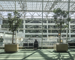 PDX Sitting Woman (Willamette Valley Photography) Tags: trees windows people woman tree window glass oregon portland person airport sitting shadows olympus terminal indoors sit pacificnorthwest pdx inside airports arrivals