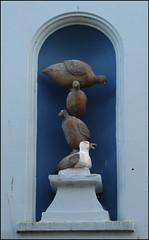 pile of birds (Philip Watson) Tags: cornwall falmouth