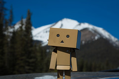 Banff Apr 2015-14 (memories by Mark) Tags: canada alberta banff banffnationalpark danbo danboard