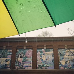 Spring with the Fishes (Ashley Jaye) Tags: fish art wet rain umbrella square spring mural minneapolis drop sierra neighborhood squareformat showers lyndale iphoneography garfieldaquarium instagramapp
