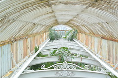 Royal Green House (MelissaCameron01) Tags: england plants london nature kew gardens architecture design modernism