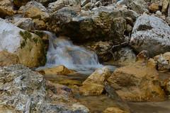 water (giovannafilotto) Tags: primavera landscape nikon acqua dolomiti vicenza bosco veneto passeggiate nikond recoaromille recoaro nikond5200 strosocavallaro